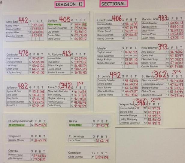2017 D II Girls Golf Sectional.png