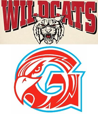 Wildcat Falcon logos