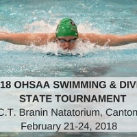 Ft. Recovery and Celina Send Swimmers To The State Finals