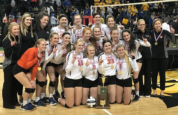 Versailles 2018 D III State VB Champs